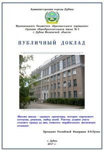 Публичный доклад 2017 г