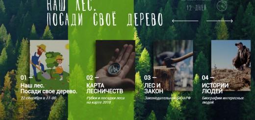 Посали лес